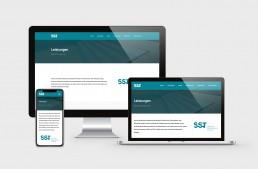 SST Saurwein Schwimmbad Technik Website Übersicht