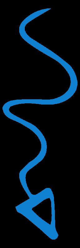 Onlineshop erstellen lassen Tirol